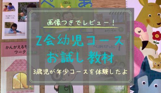 【2021年版】Z会幼児コース年少を3歳児と無料でお試し体験!
